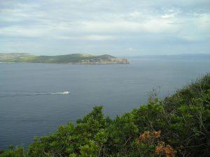 escursione ambientale e culturale Alghero Sardegna