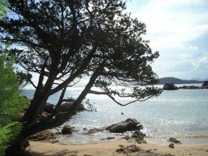 liscia ruja beach sardinia