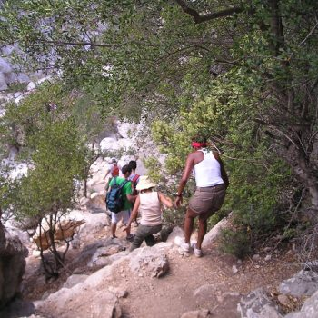trekking su gorroppu sardinia