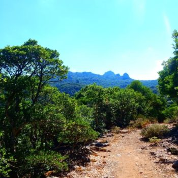 escursione trekking parco 7 fratelli sardegna