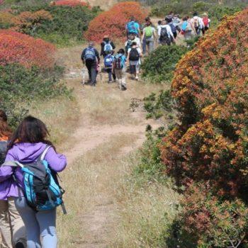 escursione trekking is cannoneris sardegna