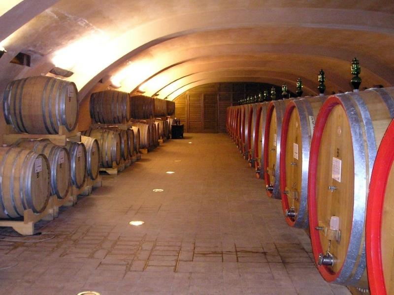 winery Monti sardinia