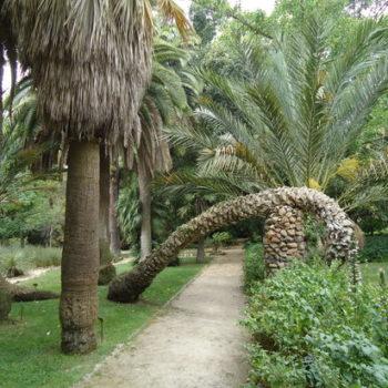 botanical garden cagliari sardinia