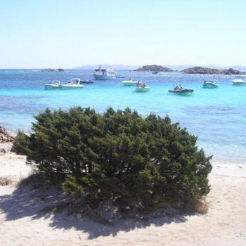 arcipelago la maddalena sardegna