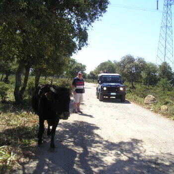 4x4 off road excursion barumini nuraghe & giara gesturi
